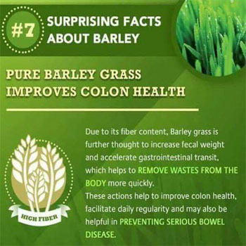 Pure Barley Grass Improves Colon Health